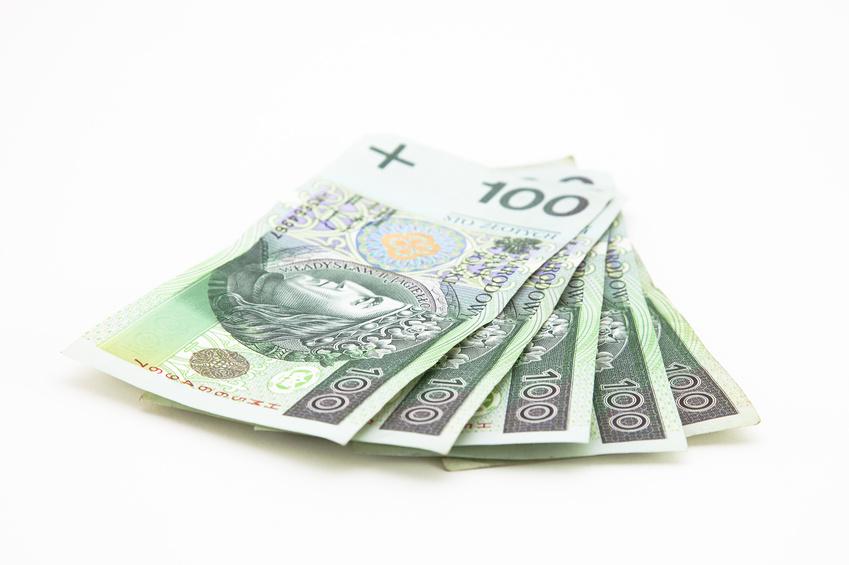 Cięcie limitu transakcji gotówkowych uderzy w MŚP