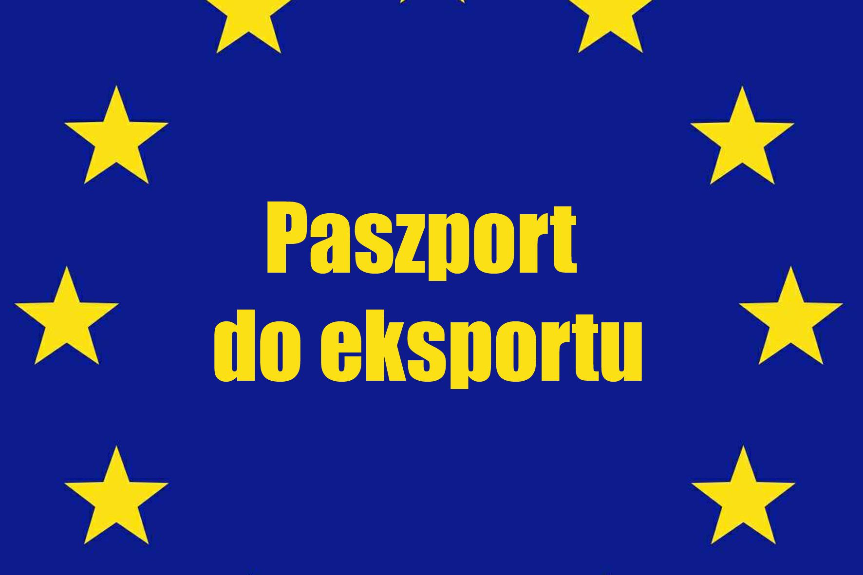 Dotacje UE: dofinansowanie rozpoczęcia lub zwiększenia eksportu