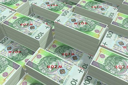 172 mln zł długów e-sklepów