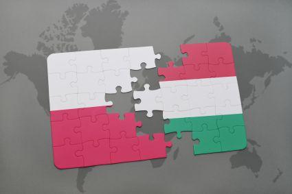 Veracomp wszedł na Węgry